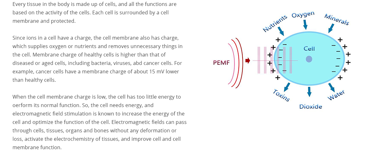 REMED Pain Therapy - Electromagnetic Stimulation Therapy